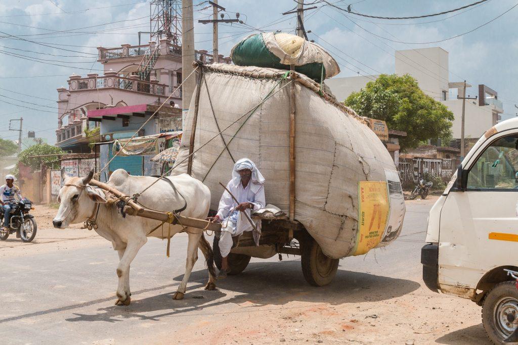 各国の配送業者シリーズ「インドの配送業者まとめ」