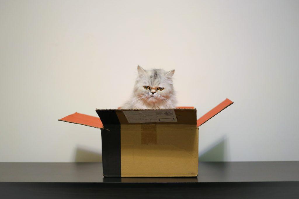 梱包材にさよなら?繰り返し使える配送箱「THE BOX」